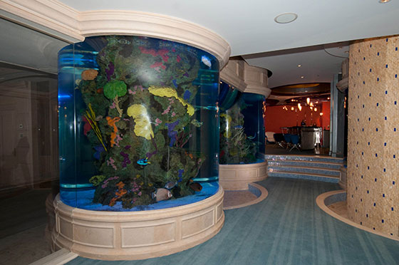 cool indoor pools with fish glow in the dark fish more info
