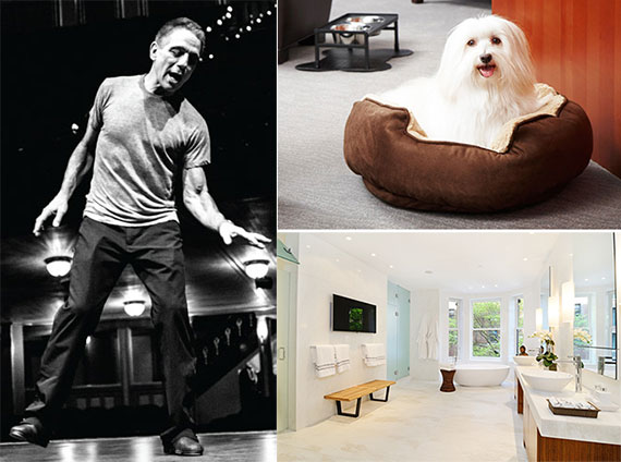 "Clockwise from left: Tony Danza, a ""furry jet-setter"" at Trump International Hotel & Tower New York and a Cloud9-automated bathroom on the Upper West Side."