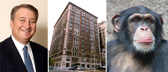 From left: Howard Milstein, 888 Park Avenue and a chimpanzee