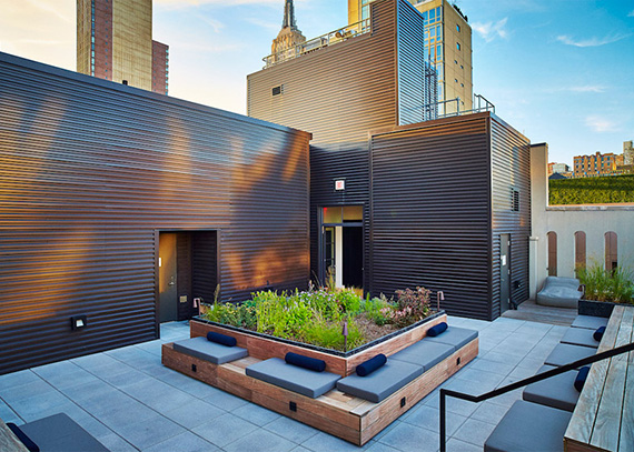 Piet Oudolf's rooftop garden at 404 Park Avenue South in NoMad