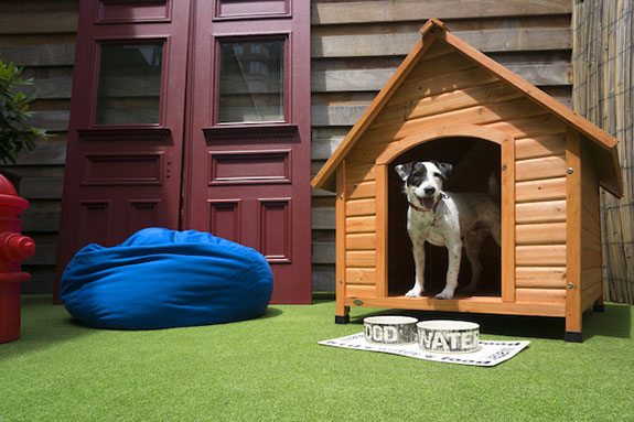 Pups will soon be living large at the Hell's Kitchen OUT Hotel.