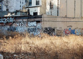 NYC vacant lot (credit: Ralph Hockens)