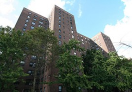 Harlem's Riverton Houses